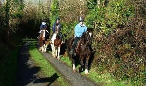 Des promenades à poney