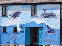 Kilrush Dolphin Centre